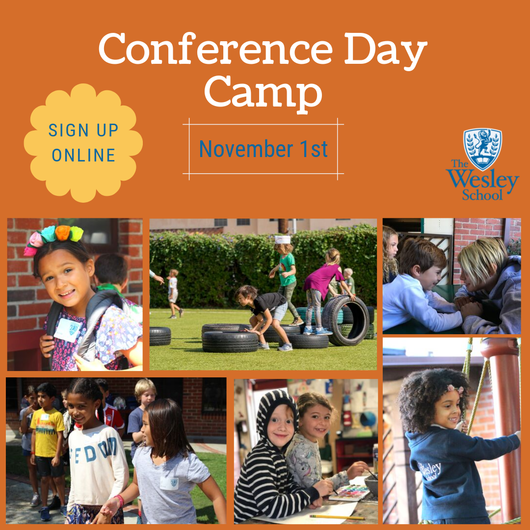 Conference Day Camp!